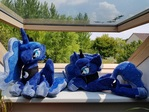 Luna - MLP Plush - Sitting and Lying