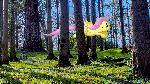 Flutter Forest (PC Wallpaper)