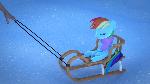 Dashie on sleigh