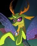 King Thorax aka king bug moose