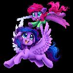 Nicole's Ponies