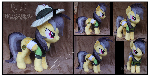 Daring Do Custom Plush