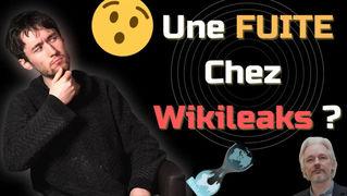 Une fuite chez Wikileaks ?!   Retour sur les câbles diplomatiques