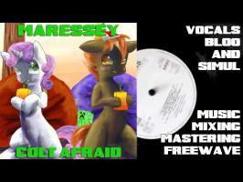 Maressey - Colt Afraid