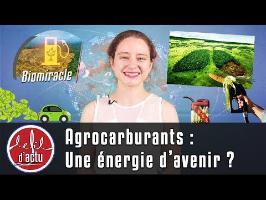 AGROCARBURANTS : UNE ÉNERGIE D'AVENIR ?