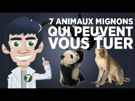 7 animaux mignons qui peuvent vous tuer