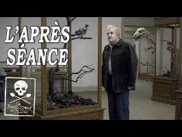 L'APRÈS-SÉANCE - Un pigeon perché sur une branche philosophait sur l'existence