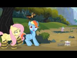Rainbow Dash Screams Appropriate Things