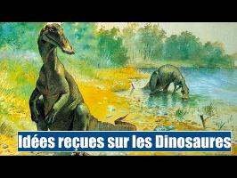 Encore des préjugés sur les Dinosaures - IRL