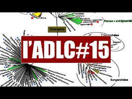 La Phylogénie en PLS - l'ADLC#15