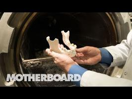 Leaving the Earth the Greenest Way Possible: Water Cremation