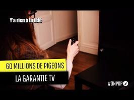 60 millions de Pigeons : la garantie TV