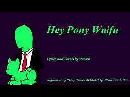Hey Pony Waifu
