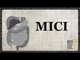 MICI - WhyDoc #14