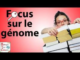 [BioTCom] Focus sur le génome