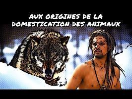 Aux origines de la domestication des animaux