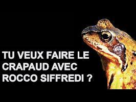 Tu veux faire le crapaud avec Rocco Siffredi ? #DansTonFlux 50