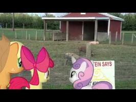 MLP: IRL - Apples Meets Pigs