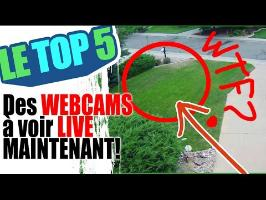 Le top 5 des webcams live maintenant