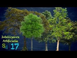 La sagesse des forêts | IA 17
