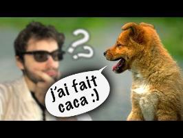 LES ANIMAUX PEUVENT PARLER NOTRE LANGUE ? Vrai ou Faux #58