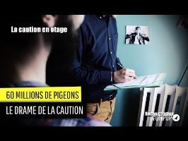 60 millions de Pigeons : le drame de la caution