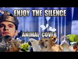Depeche Mode - Enjoy The Silence (Animal Cover)