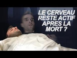 LE CERVEAU RESTE ACTIF APRÈS LA MORT ? Vrai Ou Faux #43
