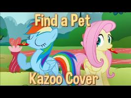 Find a Pet - Kazoo Cover