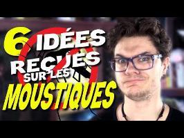 CHRIS : 6 Idées Reçues (et Fausses) Sur Les Moustiques