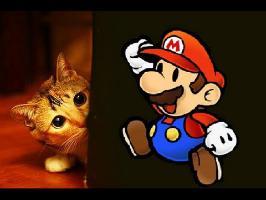 Mario fait peur aux chats