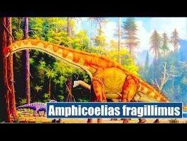 Amphicoelias: le géant qui n'existe pas - IRL