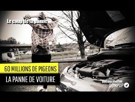 60 millions de Pigeons : le coup de la panne