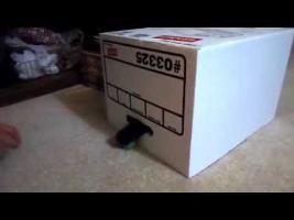 Strudel in a Box!