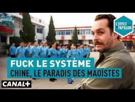 Fuck le système : Chine, le paradis des Maoïstes - L'Effet Papillon – CANAL+