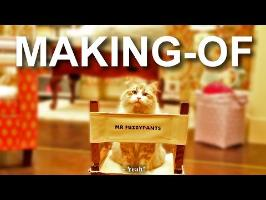 MA VIE DE CHAT - casting, interview et making-of - PAROLE DE CHAT
