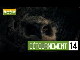Superflame Nature #2 - Détournement