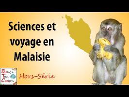 [BioTCom] HS : sciences et voyage en Malaisie