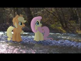 The River - MLP in Real Life Music Video