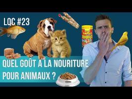 Quel est le goût de la nourriture pour animaux ? LQC #23