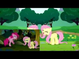 Avast Fluttershy's Void