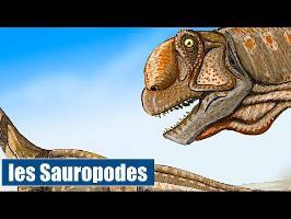 Les Sauropodes - IRL