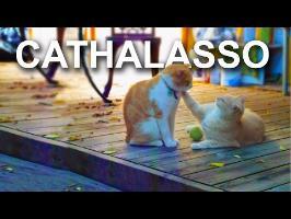 Cathalasso