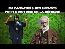 Cannabis - Une petite histoire de la défonce
