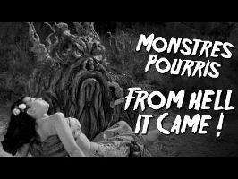 FROM HELL IT CAME - Monstres Pourris 3/11