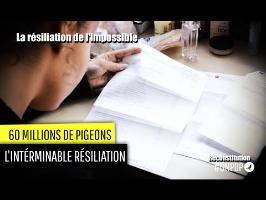 60 millions de Pigeons : la résiliation de l'impossible