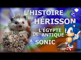 L'Histoire du HÉRISSON - De l'Egypte Antique à SONIC !
