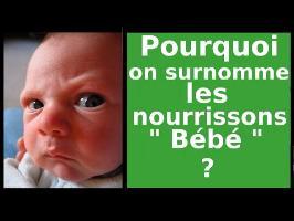 Pourquoi on surnomme les nourrissons : Bébé ? - AMoK #27