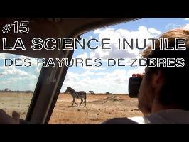 DBY #15 - La science inutile des rayures de zèbres + Livre !