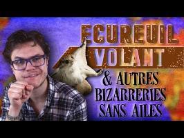 Écureuil Volant & Autres Bizarreries Sans Ailes